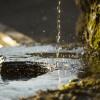 工业废水污泥检测